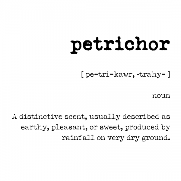 Petrichor meaning